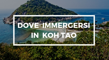 dove-immergirse-in-koh-tao